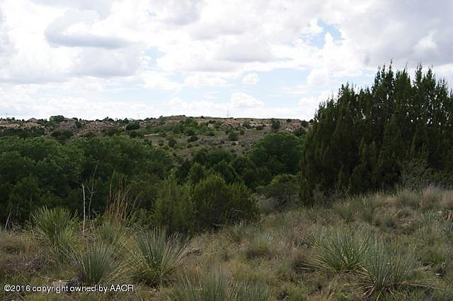 Photo of 4 Mcafee Timbercreek North Dr Amarillo, TX 79118