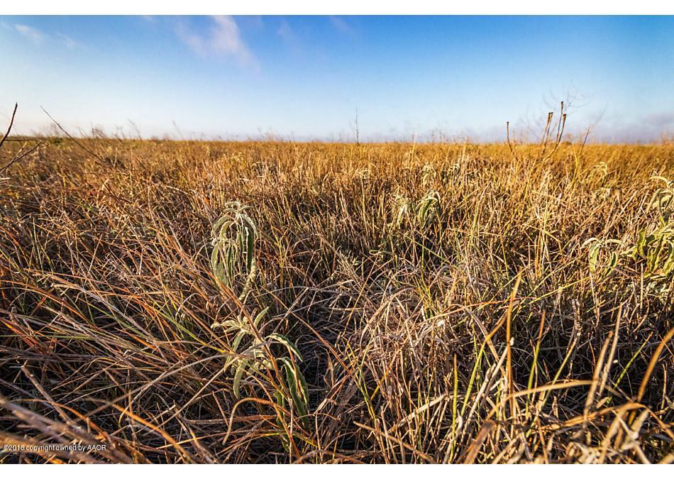 Photo of FM 1705 40 acres Happy, TX 79042