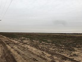 Photo of 11480 Costley Rd Amarillo, TX 79119