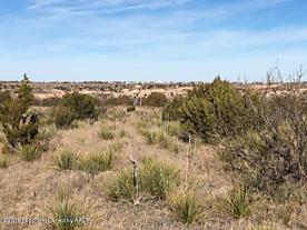Photo of MESQUITE DR Amarillo, TX 79118
