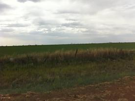 Photo of County Rd 34 Amarillo, TX 79118