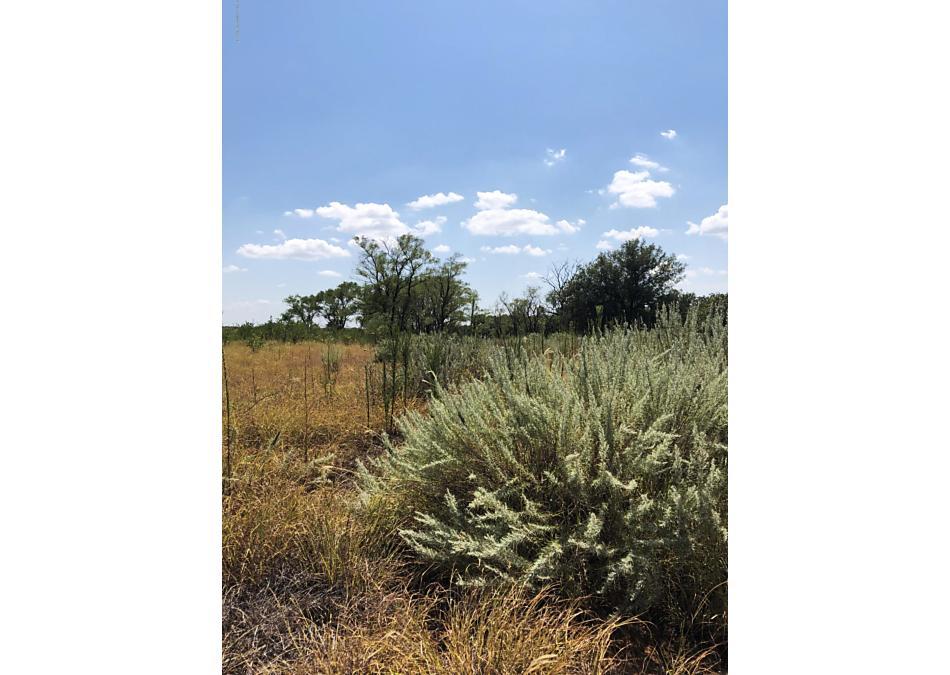 Photo of County Road 180 Wellington, TX 79095