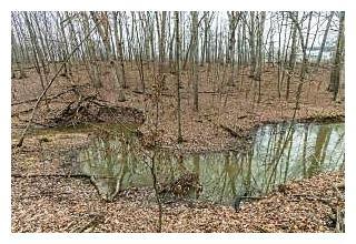 Photo of 9120 White Oak Lane Westerville, Ohio 43082