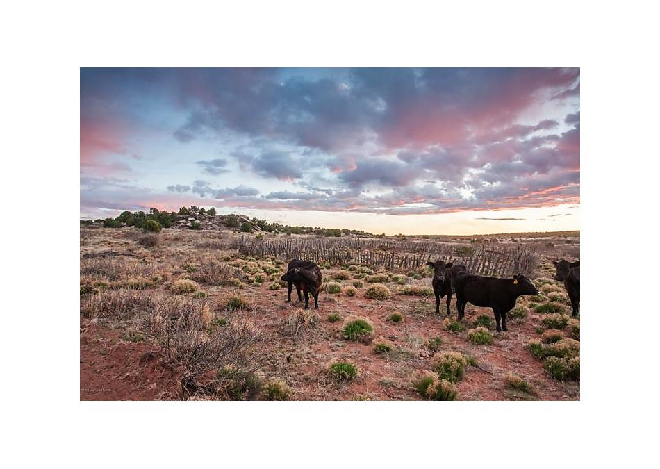 Photo of +/- 5420 Nm 'Monsimer' Ranch Other - Not In List, Other 88401
