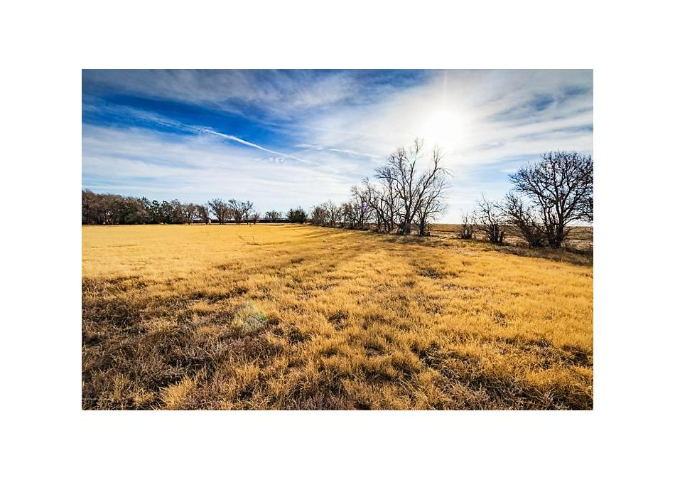 Photo of Chesnut Farms Texline, TX 79087
