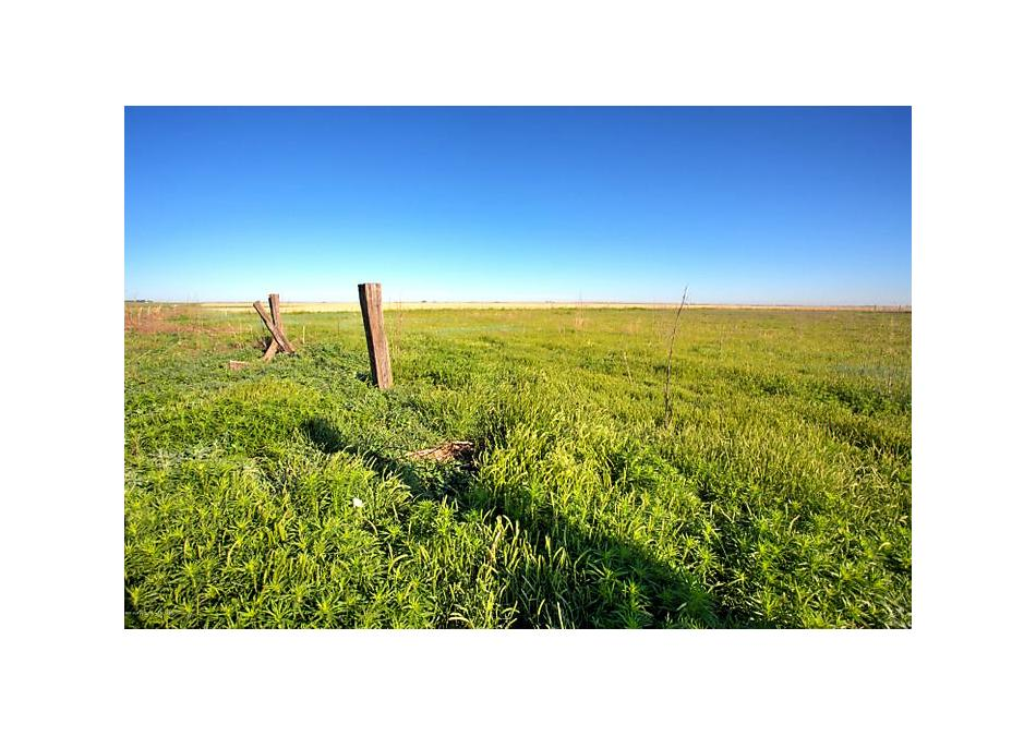 Photo of Fm 998 Cr E Dalhart, TX 79022