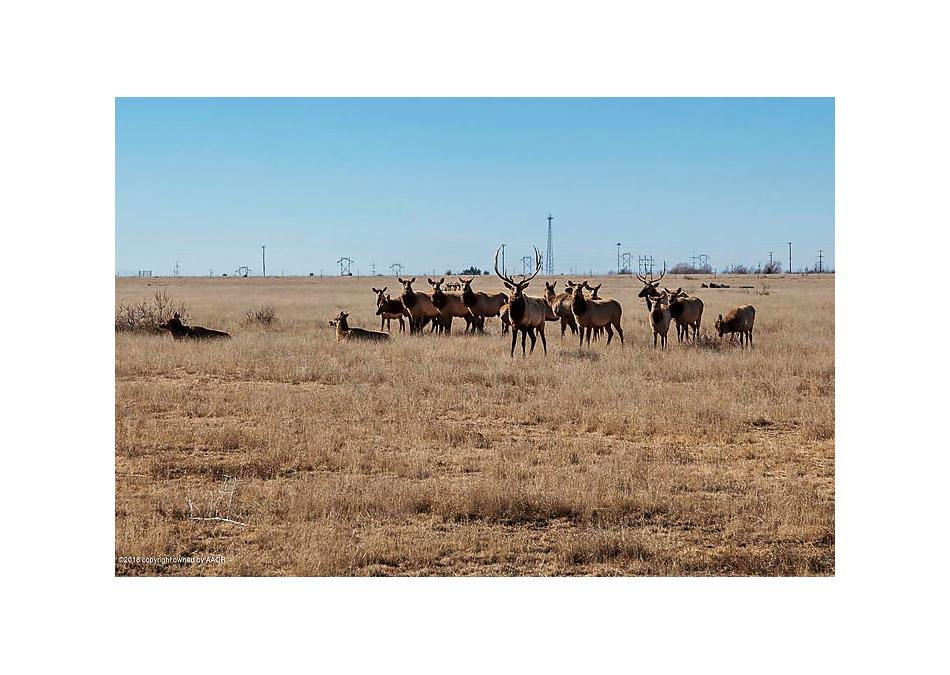 Photo of 11880 Equestrian Trl Amarillo, TX 79118