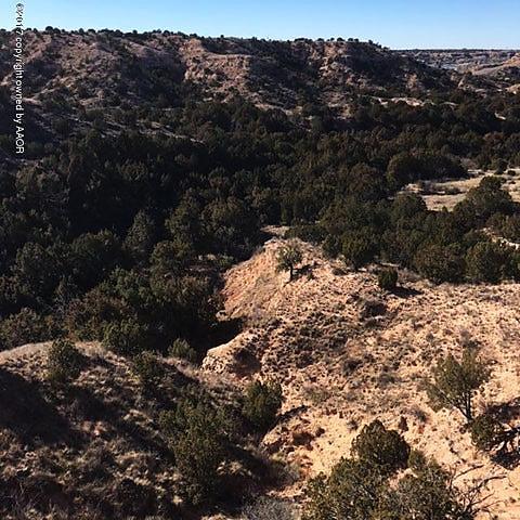 Photo of 7600 Hidden View Rd Canyon, TX 79118