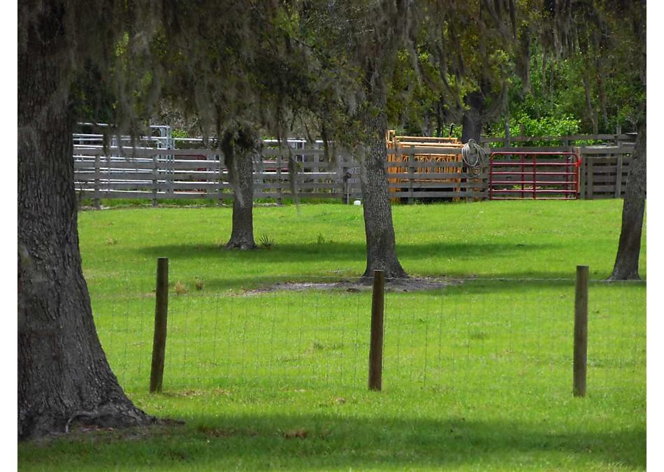 Photo of 0 Cr 308 Crescent City, FL 32112