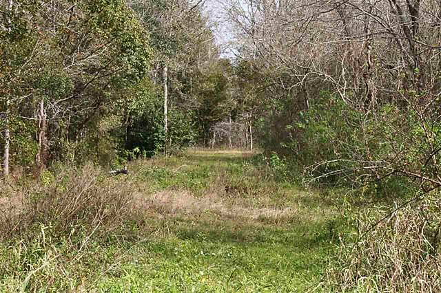 Photo of 0 E Essex Road Hastings, FL 32145