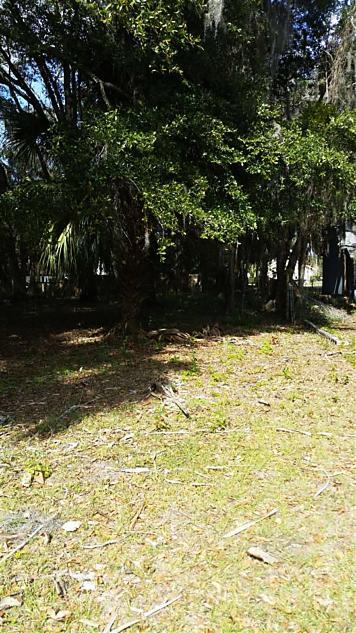 Photo of 300 N 8th St Palatka, FL 32177