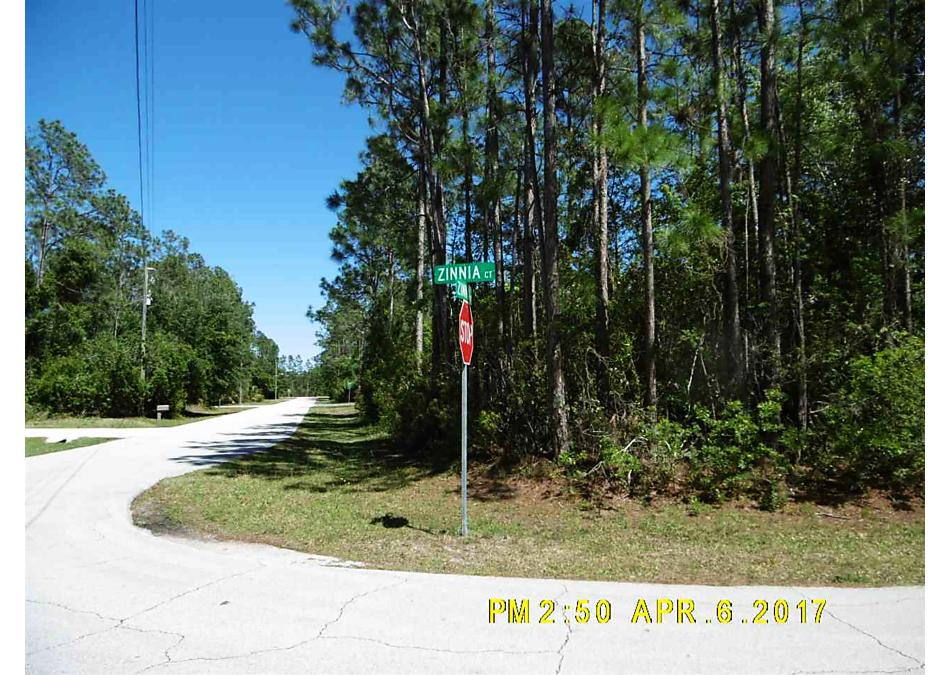 Photo of 1 Zinnia Court Palm Coast, FL 32164