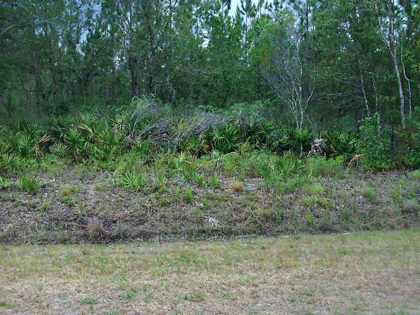 Photo of 10265 Carpenter Ave Hastings, FL 32145