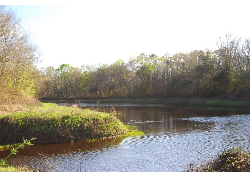 Photo of 10055 E Deep Creek Hastings, FL 32145
