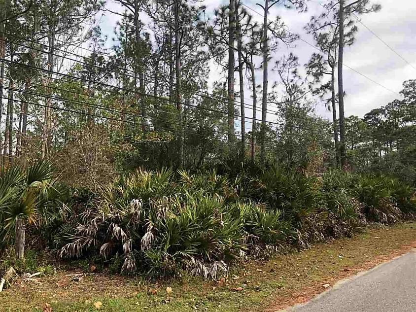 Photo of 932 Puryear St. St Augustine, FL 32084