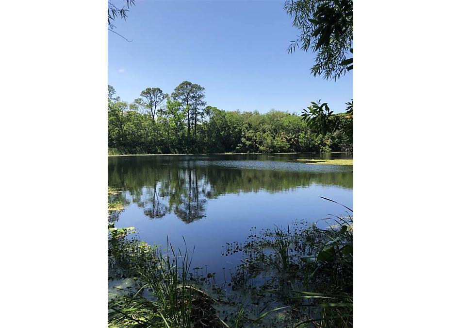 Photo of 205 Roaring Brook Drive St Augustine, FL 32084