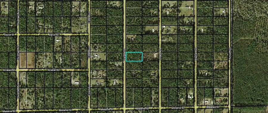Photo of 9920 Dillon Ave Hastings, FL 32145
