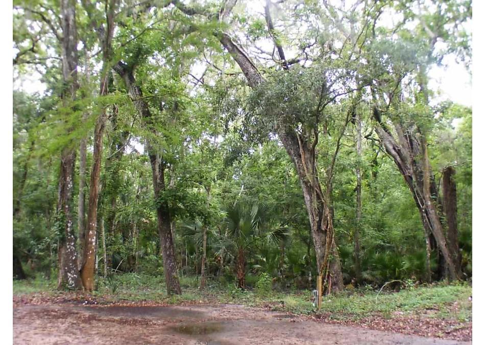 Photo of 2257 Twin Fox Trail St Augustine, FL 32086