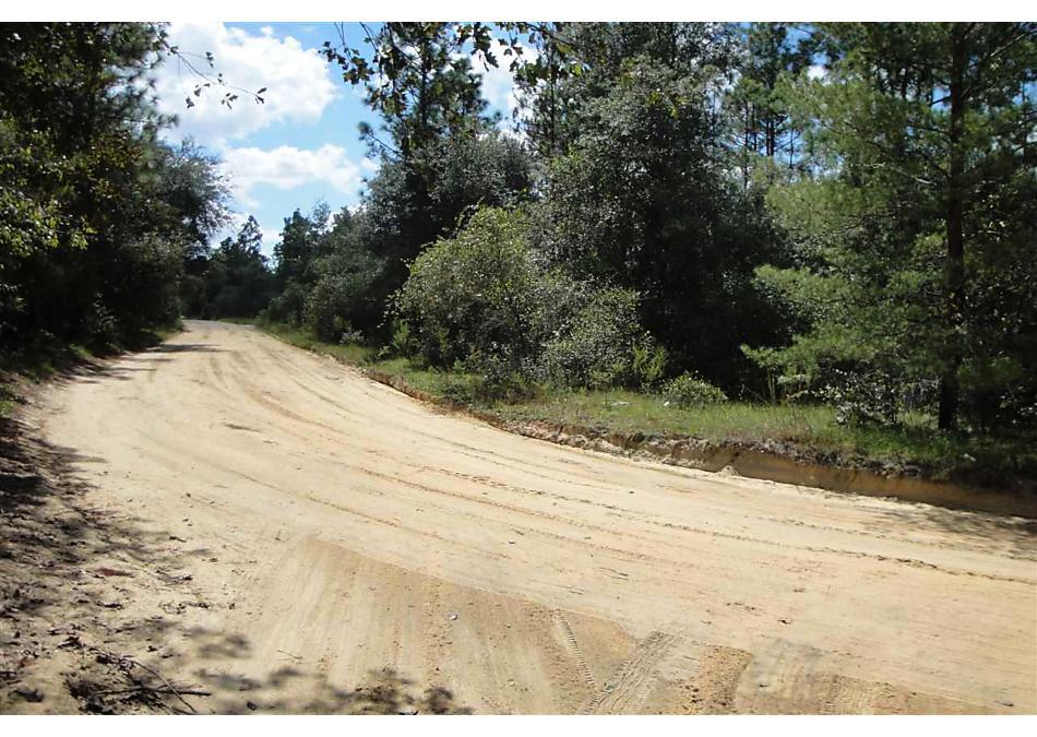 Photo of 0000 Old Bellamy Trail Melrose, FL 32666