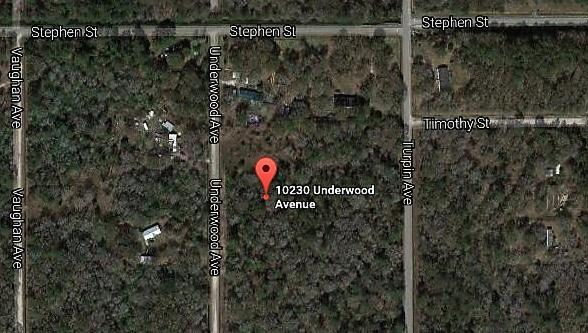 Photo of 10230 Underwood Ave Hastings, FL 32145