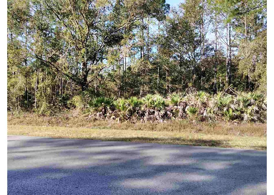 Photo of 10505 W Deep Creek Blvd Hastings, FL 32145