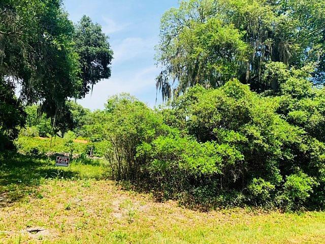 Photo of 0 E County Road 325 Hawthorne, FL 32640