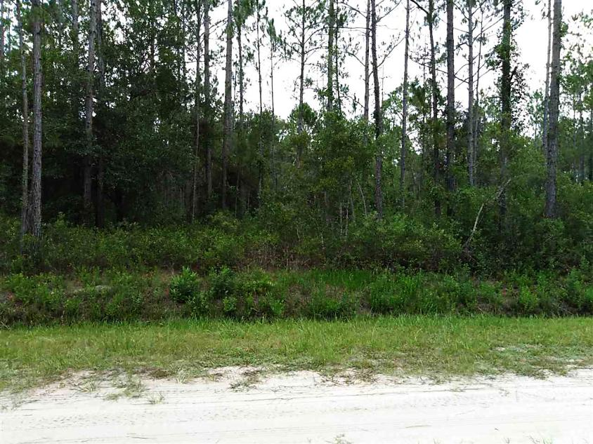 Photo of 10665 Beckenger Ave Hastings, FL 32145