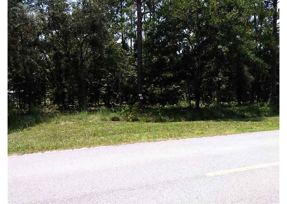 Photo of 10155 E Deep Creek Blvd Hastings, FL 32145