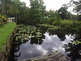 Photo of 117 Park Drive Satsuma, FL 32189