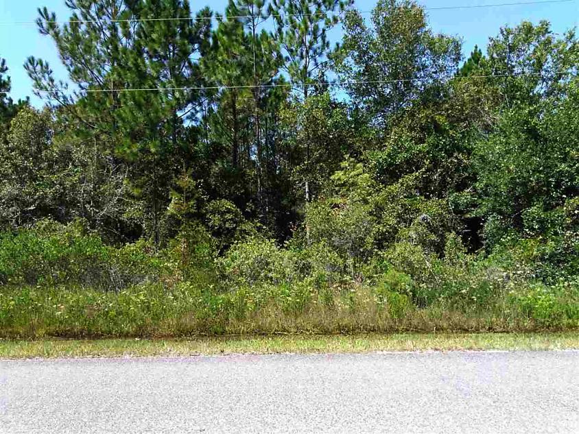 Photo of 10225 Erickson Ave Hastings, FL 32145