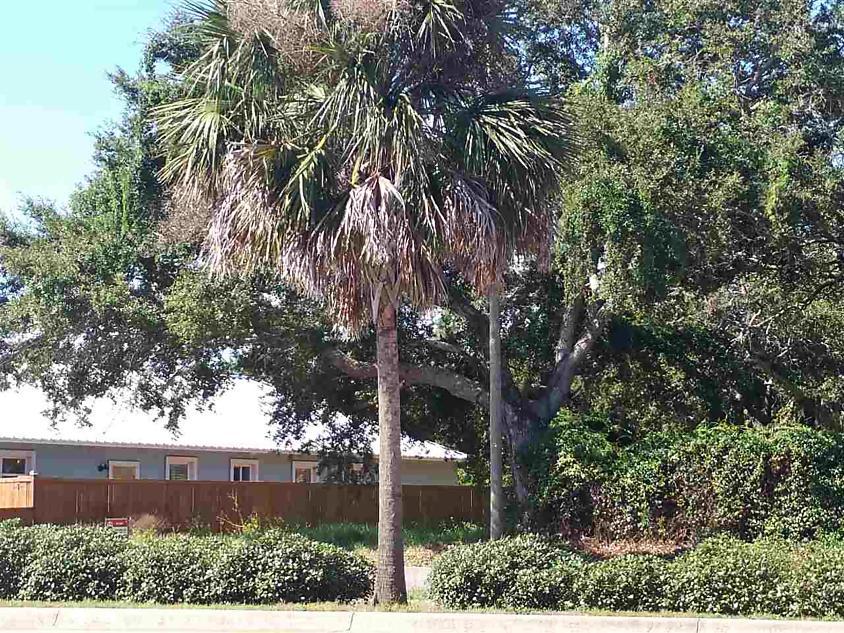 Photo of 2457 S A1a St Augustine Beach, FL 32080