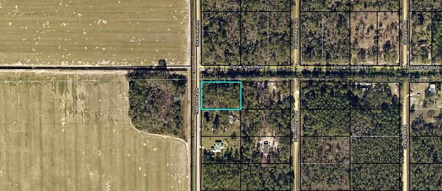 Photo of 10400 Isaacson Ave Hastings, FL 32145