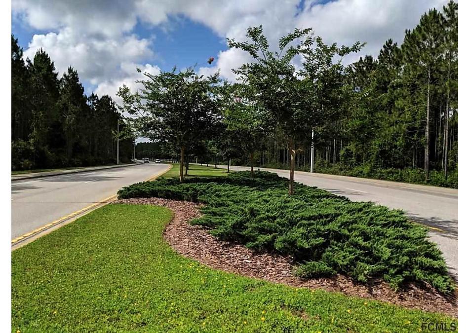 Photo of 10 Bud Shire Lane Palm Coast, FL 32137