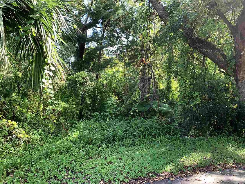 Photo of 0 Rio Vista Ave St Augustine, FL 32084