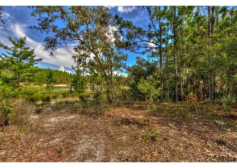 Photo of 180 Hourglass Circle Hawthorne, FL 32640