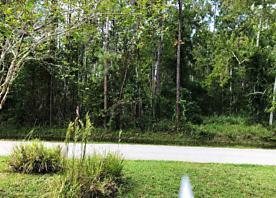 Photo of 58 Edward Dr Palm Coast, FL 32164