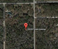 Photo of 10275 Turpin Ave Hastings, FL 32145