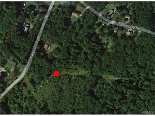 Photo of Tbd Roosa Gap Road Bloomingburg, NY 12790