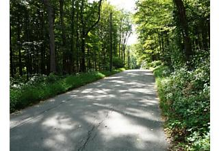 Photo of Lake Surprise Road Cold Spring, NY 10516