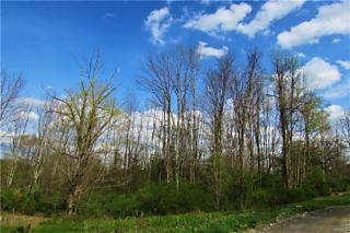 Photo of Lot 1  East Meadow Drive Pawling, NY 12564