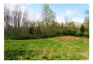 Photo of Lot 11   Cushman Road Pawling, NY 12564