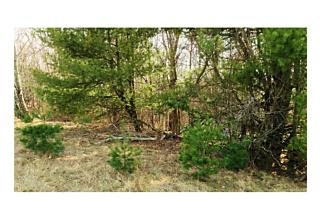 Photo of 49   Mountainview Road Ellenville, NY 12428