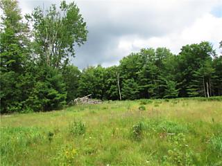 Photo of 390 County Route 56 Wurtsboro, NY 12790