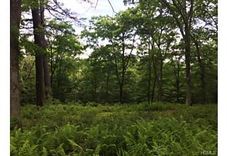 Photo of Lot 159 Lower Lumber Road Glen Spey, NY 12737
