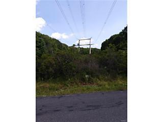 Photo of Katrina Falls Road Rock Hill, NY 12775