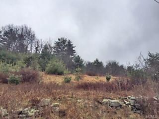 Photo of Twn Road 20 Narrowsburg, NY 12764