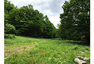 Photo of 17 & 33 Davenport Road Livingston Manor, NY 12758