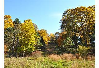 Photo of Serpentine Road Tuxedo Park, NY 10987