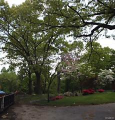 Photo of 76 Rutland Road Bronxville, NY 10708