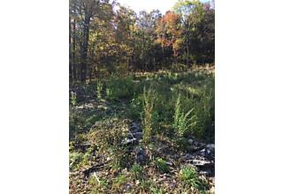 Photo of 1739 Kings Highway Chester, NY 10918